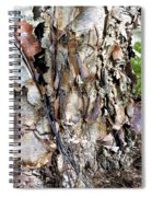 River Birch Spiral Notebook
