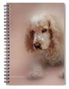 Saint Shaggy Art 8 Spiral Notebook