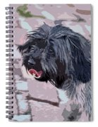 Shaggy Pup Abstract Spiral Notebook