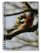 Shake Your Tail Feather Spiral Notebook