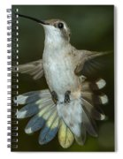 Shake Your Tail Feathers Spiral Notebook