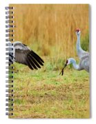 Shall We Dance Spiral Notebook