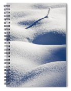 Shapes Of Winter Spiral Notebook