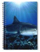 Shark In The Dark Spiral Notebook