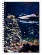 Shark In Zoo Aquarium Spiral Notebook