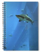 Sharknado In Dubai Spiral Notebook