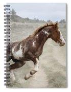 Sharp Turn Spiral Notebook