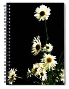 Shasta Daisies For Dad Spiral Notebook