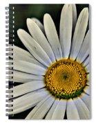 Shasta Daisy Spiral Notebook