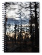 Shasta Trinity National Forest Spiral Notebook
