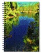 Shasta's Still Waters Spiral Notebook