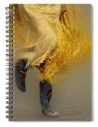 Pow Wow Shawl Dancer 9 Spiral Notebook