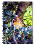 She Waits Spiral Notebook