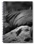 Shedd Aquarium Iguana Spiral Notebook