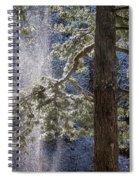 Shedding Snow Spiral Notebook