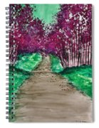 Shedding Sorrows Along The Way Spiral Notebook