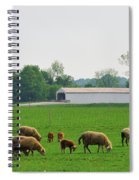 Sheep And Covered Bridge Spiral Notebook