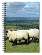 Sheep At Westbury Tor Spiral Notebook