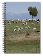 Sheep Country Spiral Notebook