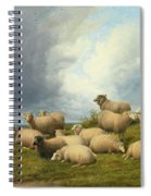Sheep In A Pasture Spiral Notebook