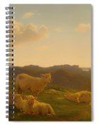 Sheep On A Hill Near Skarridso Spiral Notebook
