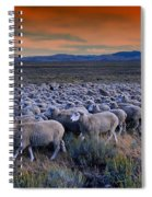 Sheepherder Life Spiral Notebook