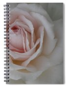 Sheer Bliss Rose Spiral Notebook
