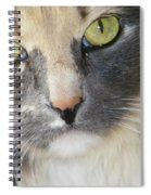 Shelby's Eyes 4 Spiral Notebook