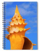 Sheldon 1 Spiral Notebook