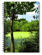 Sheldon Marsh Algae Pond Spiral Notebook