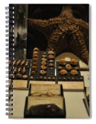 Shell Collection Spiral Notebook