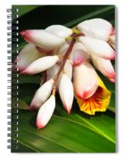 Shell Ginger Flowers Spiral Notebook