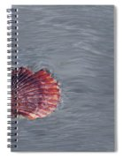 Shell Imprint Spiral Notebook