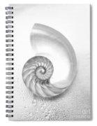 Shell Inside - Bw Spiral Notebook