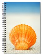 Shell On Beach Spiral Notebook