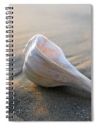 Shell On The Beach Spiral Notebook