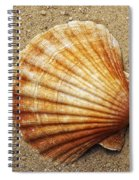 Shell On The Sand Spiral Notebook