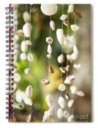 Shell Windchimes Spiral Notebook