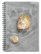 Shells On The Beach II Spiral Notebook