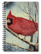 Shelly's Cardinal Spiral Notebook