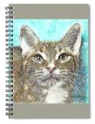Shelter Cat Fantasy Art Spiral Notebook