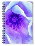 Sheltered Spiral Notebook