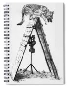 Shepherd On A Frame Spiral Notebook