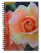 Sherbert Rose Spiral Notebook
