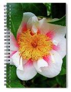 Sherman Gardens Study 8 Spiral Notebook