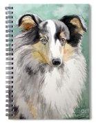 Shetland Sheep Dog Spiral Notebook