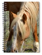 Shiloh Spiral Notebook