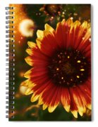 Shimer Of Fall Spiral Notebook