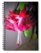 Shimmering Beauty Spiral Notebook