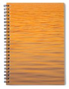 Shimmering Surface Spiral Notebook
